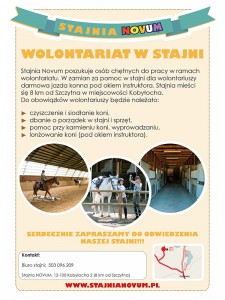 Stajnia wolontariat_800x600